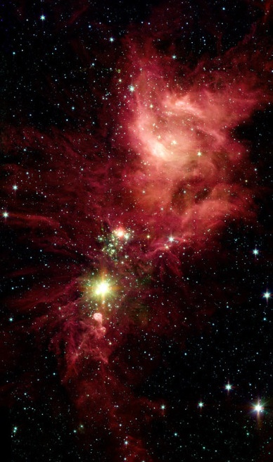 newborn-stars